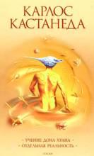 Осознанное сновидение, Кастанеда, Искусство сновидения